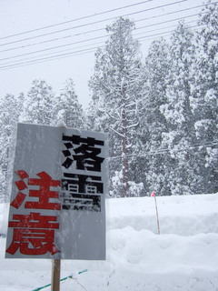 091216_ooyuki_01.JPG