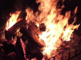 100107_2010_fire.JPG