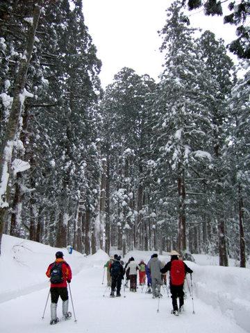 snows_1.JPG