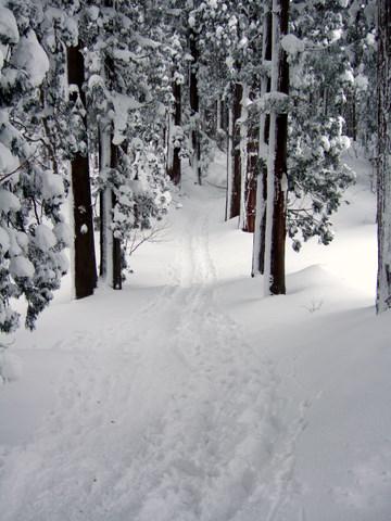snows_20.JPG
